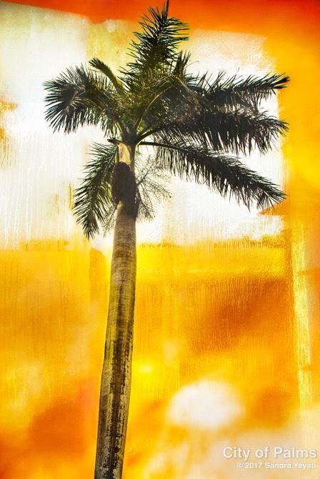 City of Palms composite photograph on canvas © Sandra Yeyati